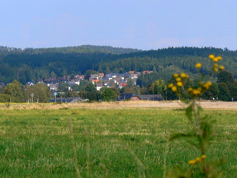 Niederlamitz
